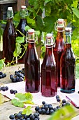 Several bottles of red grape juice on garden table