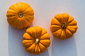 Three small orange pumpkins (variety 'Sweetie Pie')