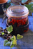 Redcurrant compote in preserving jar