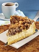 Piece of Rahmkuchen (cheesecake) on server
