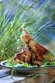 Herb chicken with coriander leaves