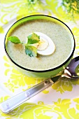 Cream of broccoli soup with boiled egg