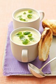 Cream of courgette soup with basil in cups, toast