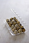 Quails' eggs in plastic container