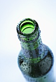 Green bottle of beer with drops of water