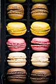 Macarons in plastic packaging