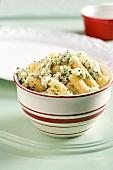 Tortiglioni with blue cheese, ricotta and herbs