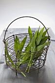 Ramsons (wild garlic) in wire basket