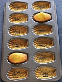Madeleine tin with two madeleines (small French cakes)