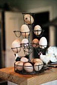 Eggs in metal holder