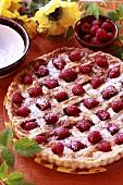 Raspberry tart with lattice crust