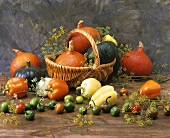 Various types of pumpkins and peppers