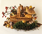 Basket of assorted mushrooms and rose hips