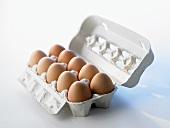 Ten brown eggs in open egg box
