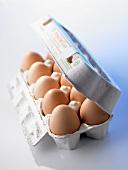 Ten brown eggs in half-opened egg box
