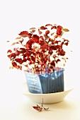Daikon cress (sprouts of Daikon radish)