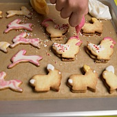 Icing animal-shaped Easter biscuits