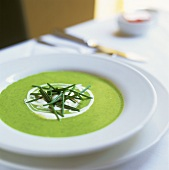 Nettle soup with crème fraîche and chives