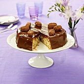 Chocolate nut cake with chocolate truffles