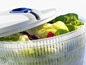 Salad spinner with salad leaves