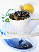 Shellfish in bowl and fish on plate in fridge