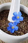 Flax flowers and linseed in a mortar