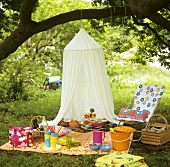 Picnic with salad, drinks, mosquito net, garden chair etc.