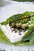 Feta with lavender and honey dressing