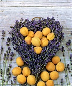 A lavender heart with apricots on wood