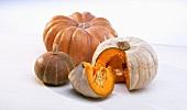 Various types of pumpkins