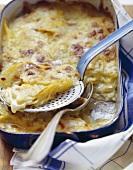 Potato gratin in baking dish and on server