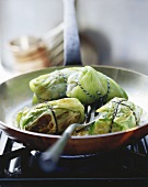 Stuffed cabbage leaves in a frying pan