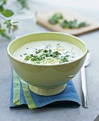 Creamy spring onion and herb soup
