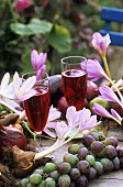 Autumn crocuses, grapes, red grape juice on table
