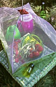 Schüssel mit Tomaten & Bohnen unter einer Fliegenhaube