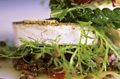 Goat's cheese on lentil salad