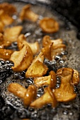 Frying chanterelles in a frying pan