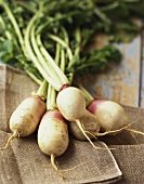 Five turnips with leaves