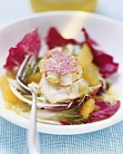 Red mullet on radicchio and fennel salad