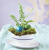 Gefärbtes Ostereier auf Moos in einer Schüssel