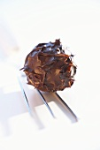 Chocolate truffle with chocolate fork on white background