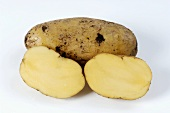 Two potatoes, variety 'Siglinde', whole and halved