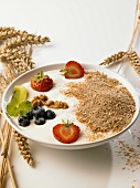 Quark dessert with fruit and oat bran