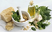 Still life with ingredients for pesto