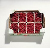Raspberries in a crate