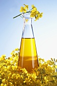 A bottle of rape seed oil with rape flowers