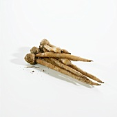 Thai Ginger; Galangal