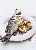 Barramundi with oven-baked potatoes & creme fraiche