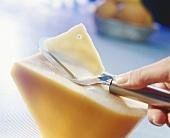 Shaving slices of Gouda
