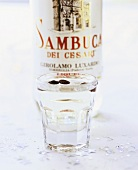 Sambuca with bottle in background